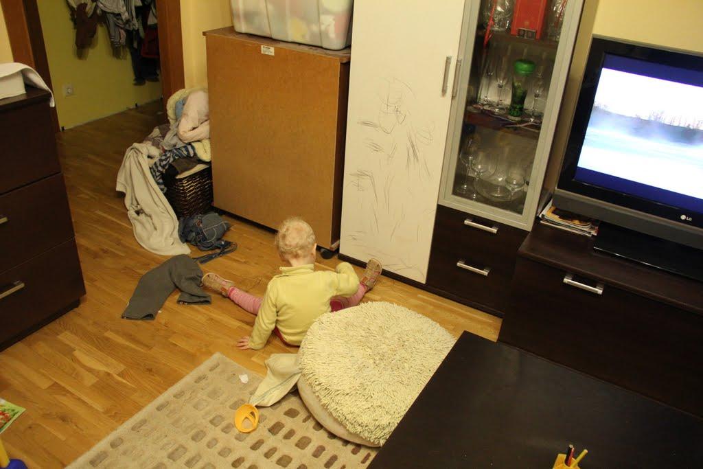 Namų puošyba