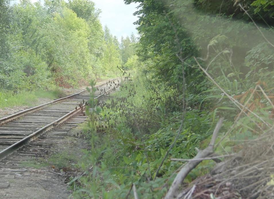 Kaišiadorių geležinkeliai