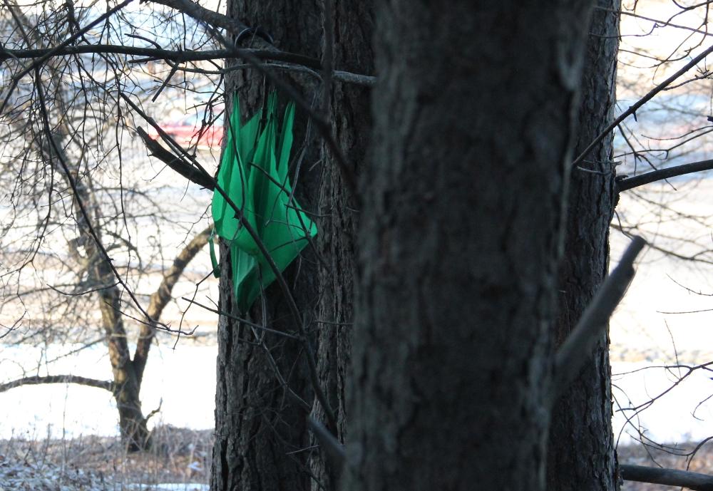 Žalias skėtis - matyt sutartinis ženklas.