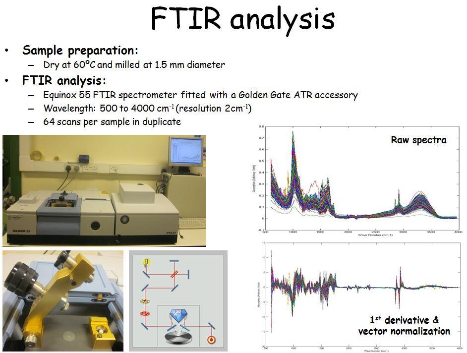 Štai taip pašarus tyrinėja lazeriais ir tai yra PRIFYSGOL Aberystwyth universiteto dalyks...