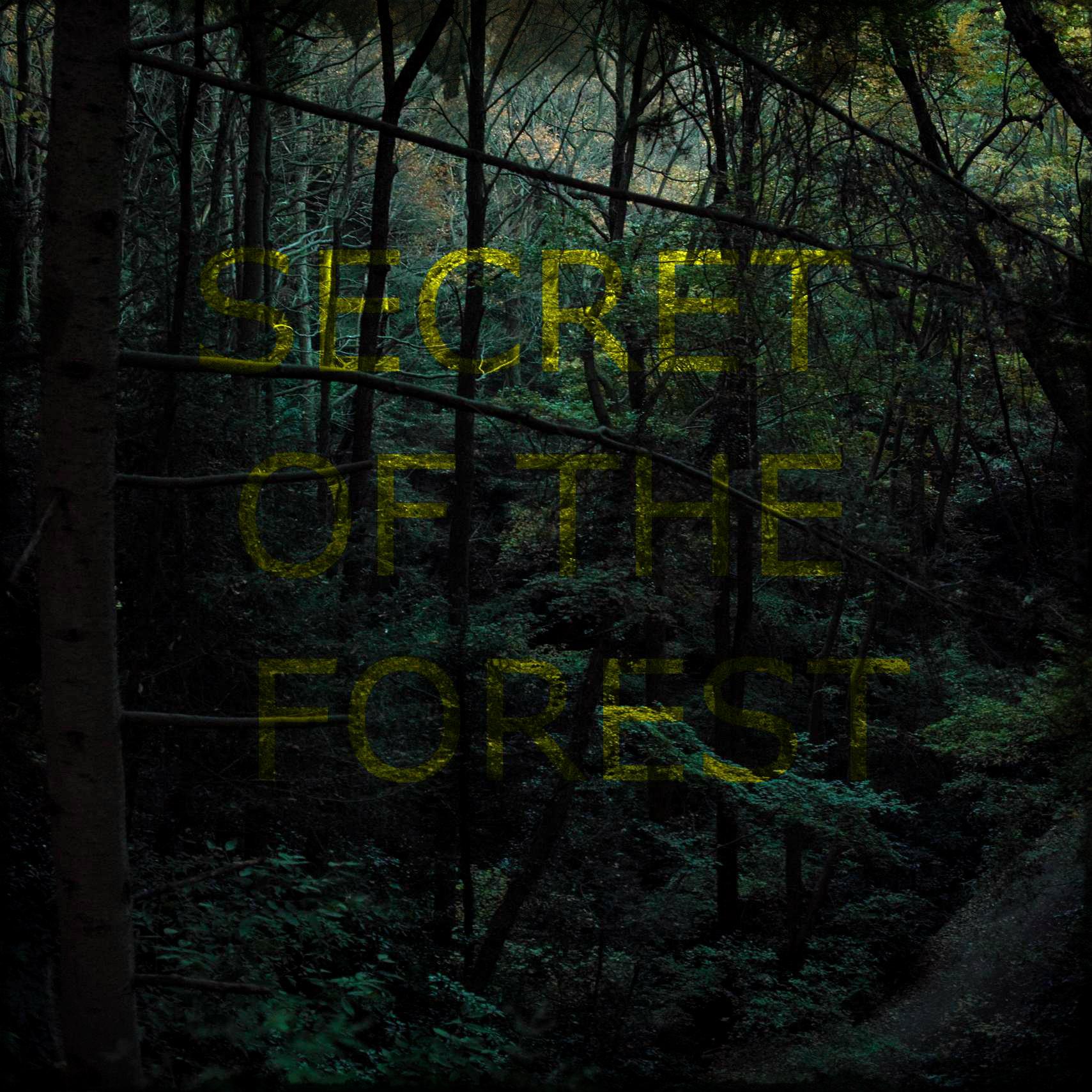 Štai aš jums parodysiu dabar slaptą takelį per tą baugų mišką. Paveiksliukas iš souncloud.com